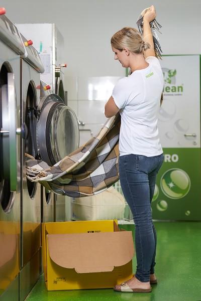 Reinigung: Wolldecke